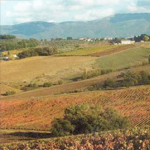To the discovery of Foligno Montefalco and Bevagna